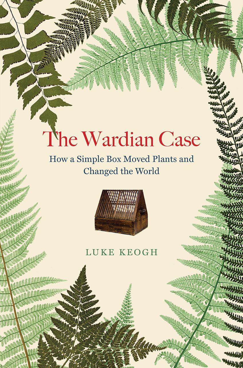 Неожиданная книжная находка - вторая такого рода: книга о непопсовом научном...
