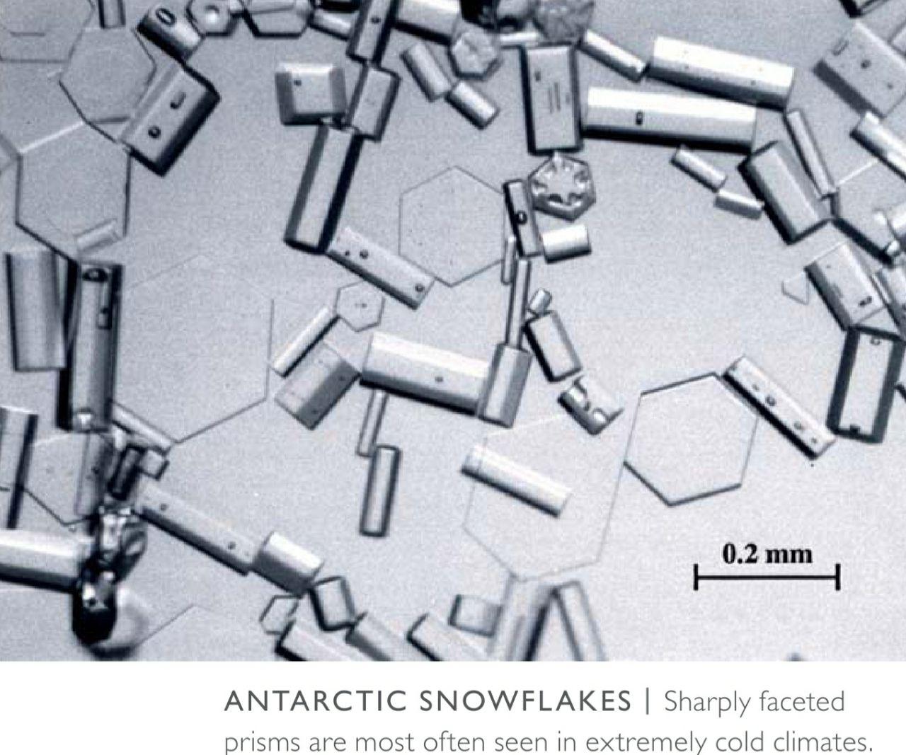 Продолжим сыпать снежными фактами - зря что-ли столько книг про снег...