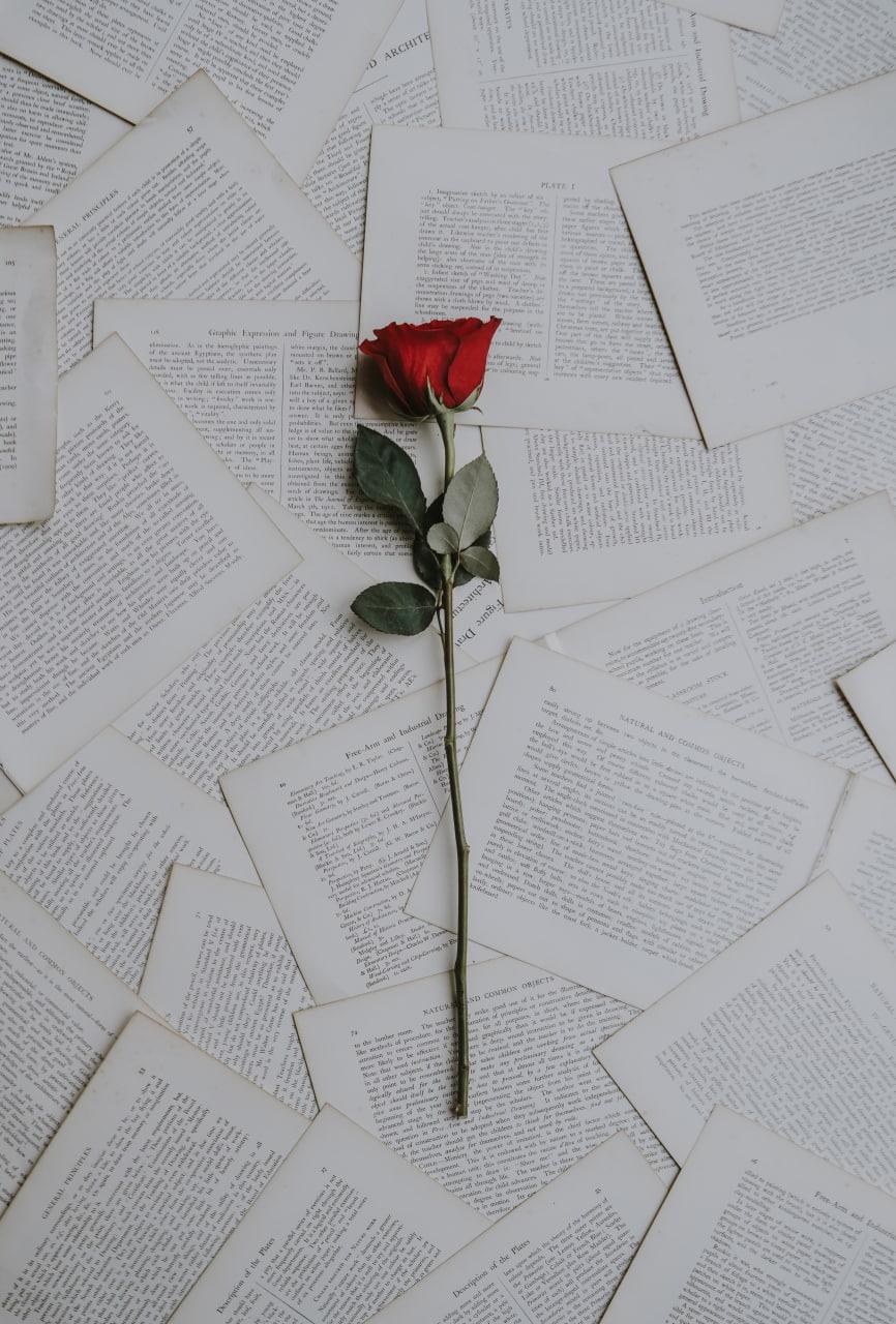 Что почитать о любви?  Ну, знаете, именно о любви, а не о той богатой гамме...