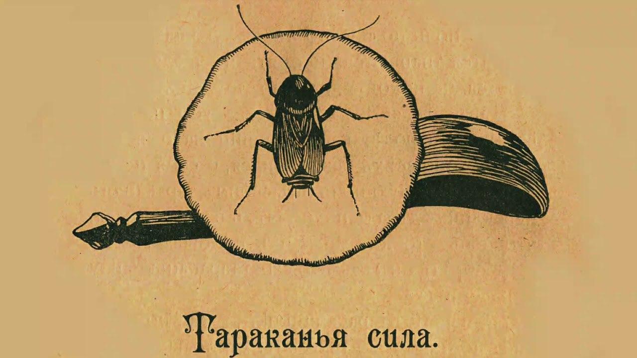Жили Фролка-Сидень да жена его Домна в доме. И одолевали их тараканы. Ночами...