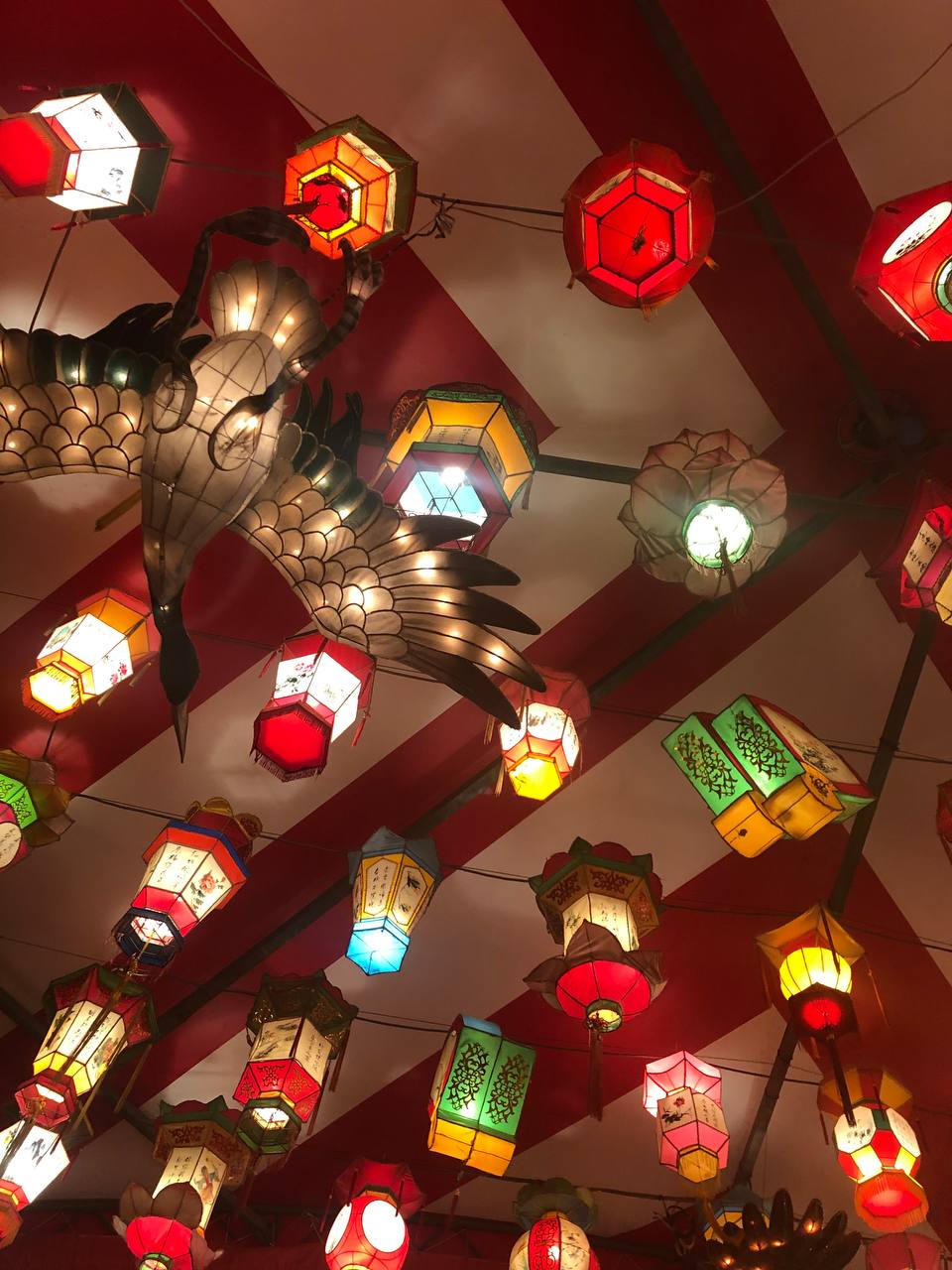 В честь Китайского Нового года выкладываю фото прошлогоднего праздника