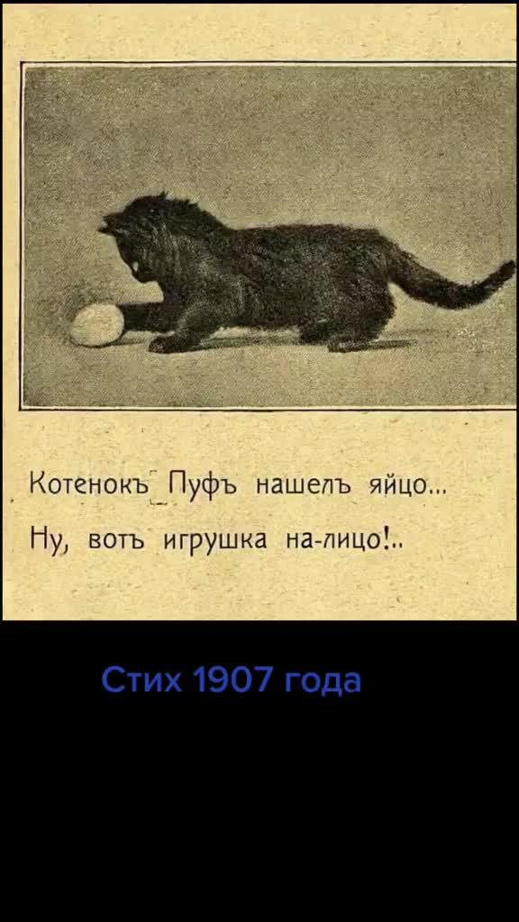 my-poyavilisy-v-tik-tok-v-etom-carstve-legokomyslennogo-kontenta-i