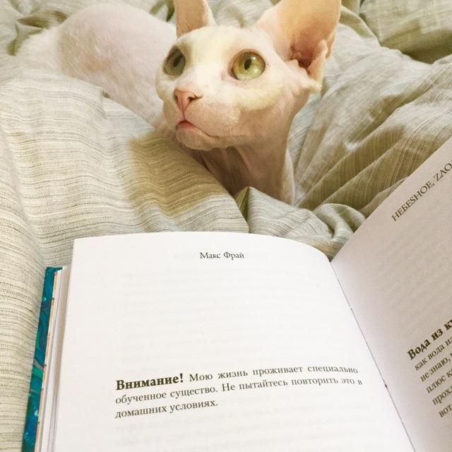 Читать и читать   рекомендации   Раз уж вы здесь, то вы точно любите читать...