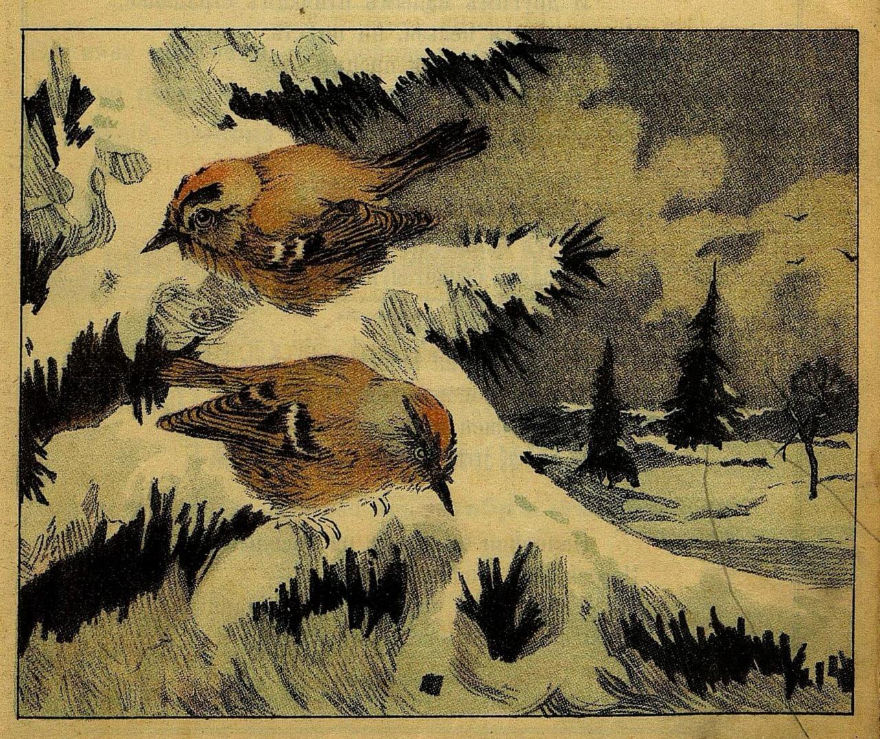 Пир горой  Выпал снег… Занесло все дорожки, И луга, и поля, и гумно; На снегу у...