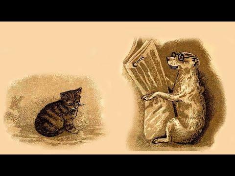 Сказка о том, как пес Трезор и кот Васька поссорились.