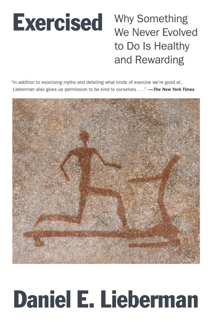 Просто супер-новость – даже две: 1) книга Д. Либермана про физкультуру, образ...
