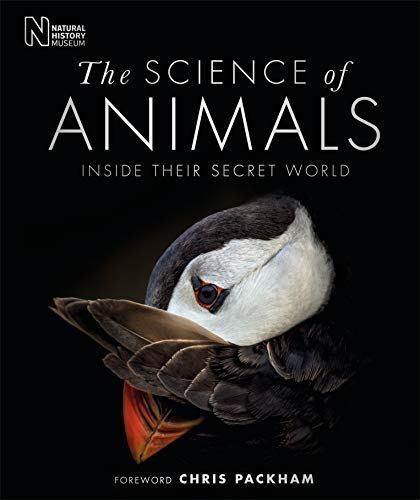 Занятная  обложка книги о секретиках животных.