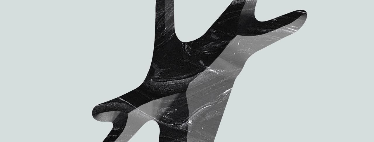 Spaika.media - независимая исследовательская платформа об арт-активизме...