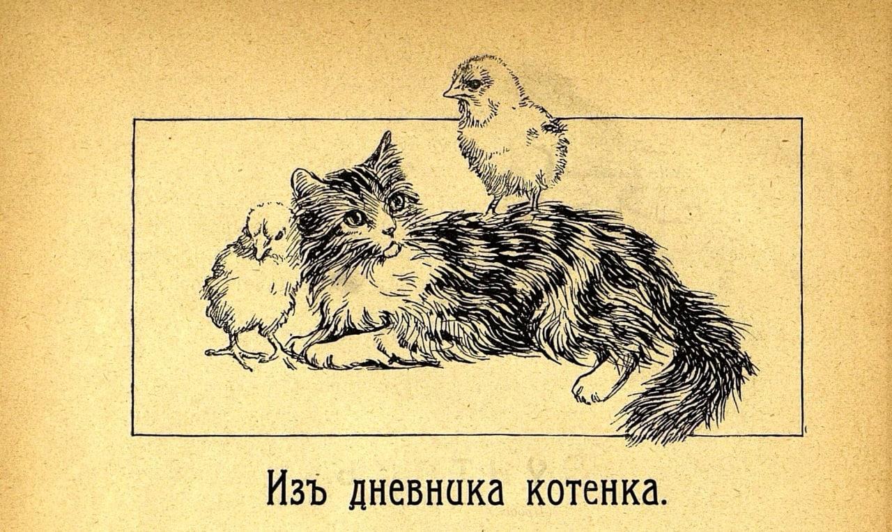 Из дневника котенка  12 февраля 1905 года. Вчера дворняшка загрызла нашу...