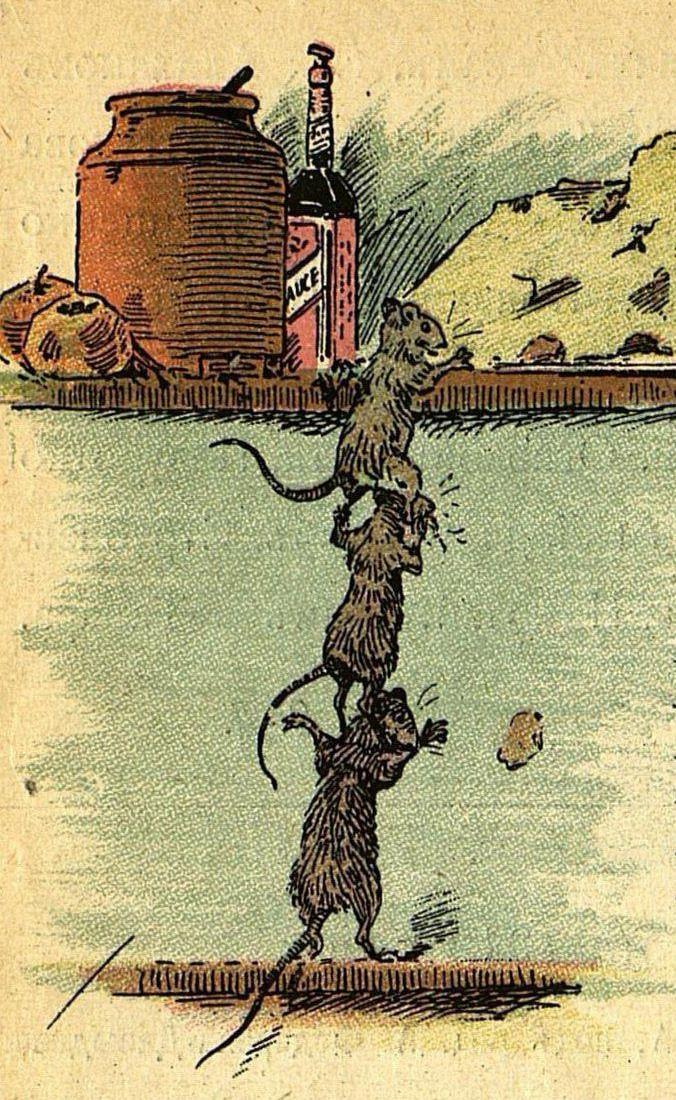 Катастрофа  Договор заключивши, мышата На добычу выходят втроем И, колонкою...