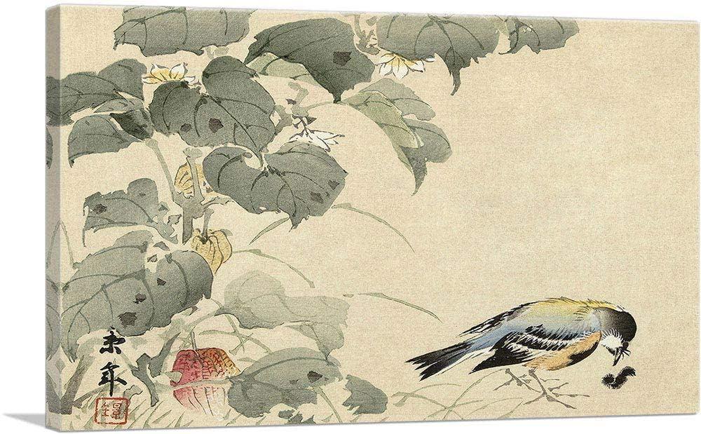 «Взгляд птиц не отрывался от гусениц в течение миллионов лет, превращая тела...