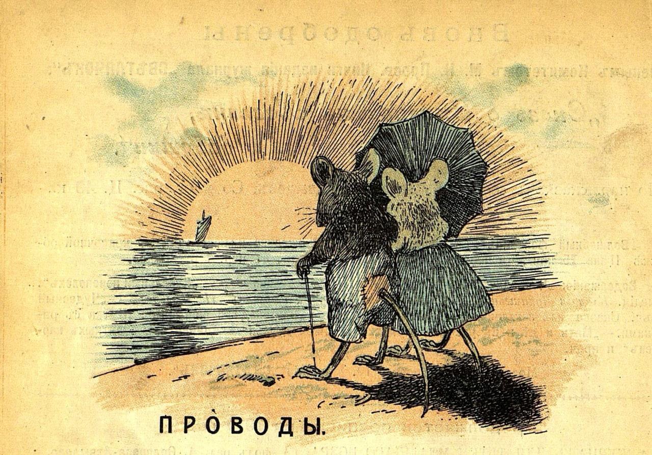 provody-v-krym-izvolil-uezzhaty-kot-i-na-zdorovye-myshi-vyshli
