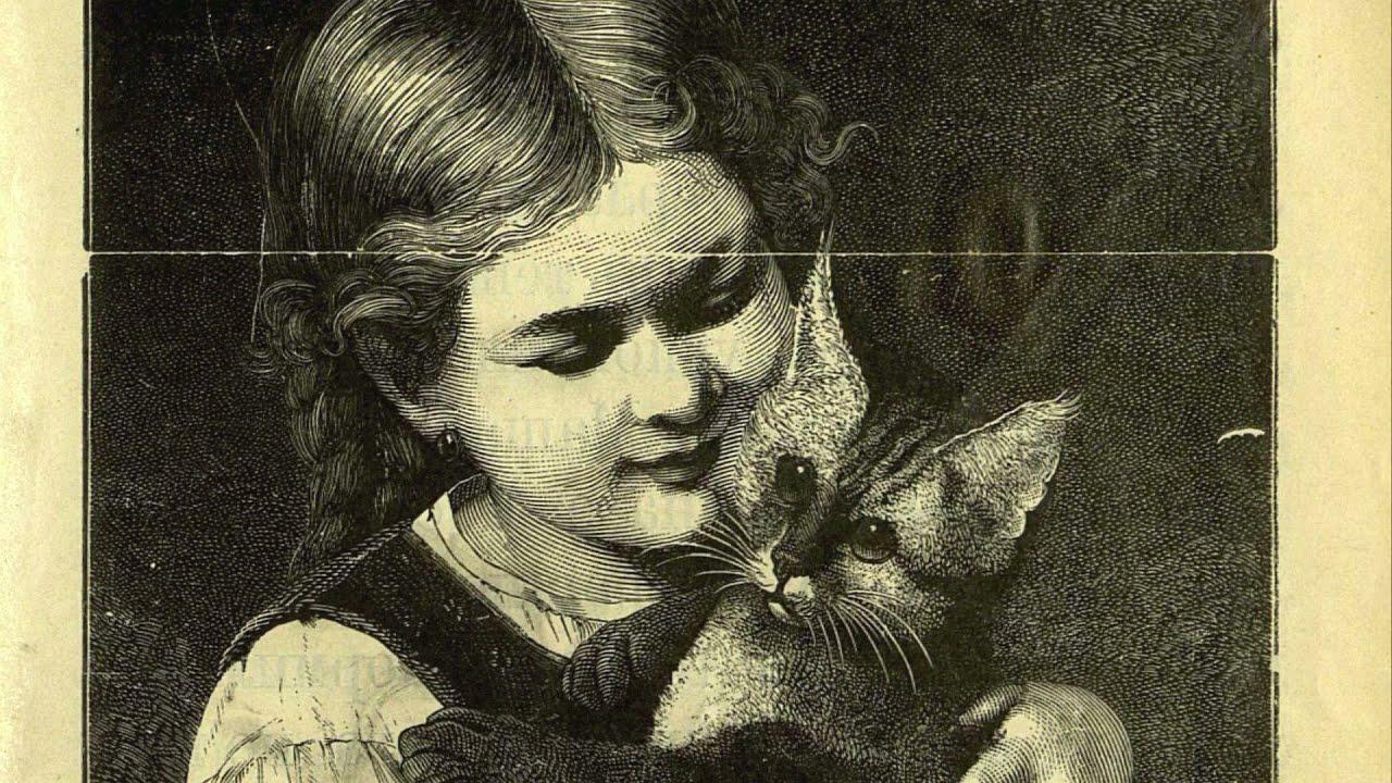 Милая история котёнка, которого вовремя нашли....