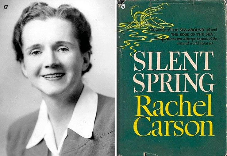 Рэйчел Карсон, начавшая борьбу против применения ДДТ  и обложка ее книги...