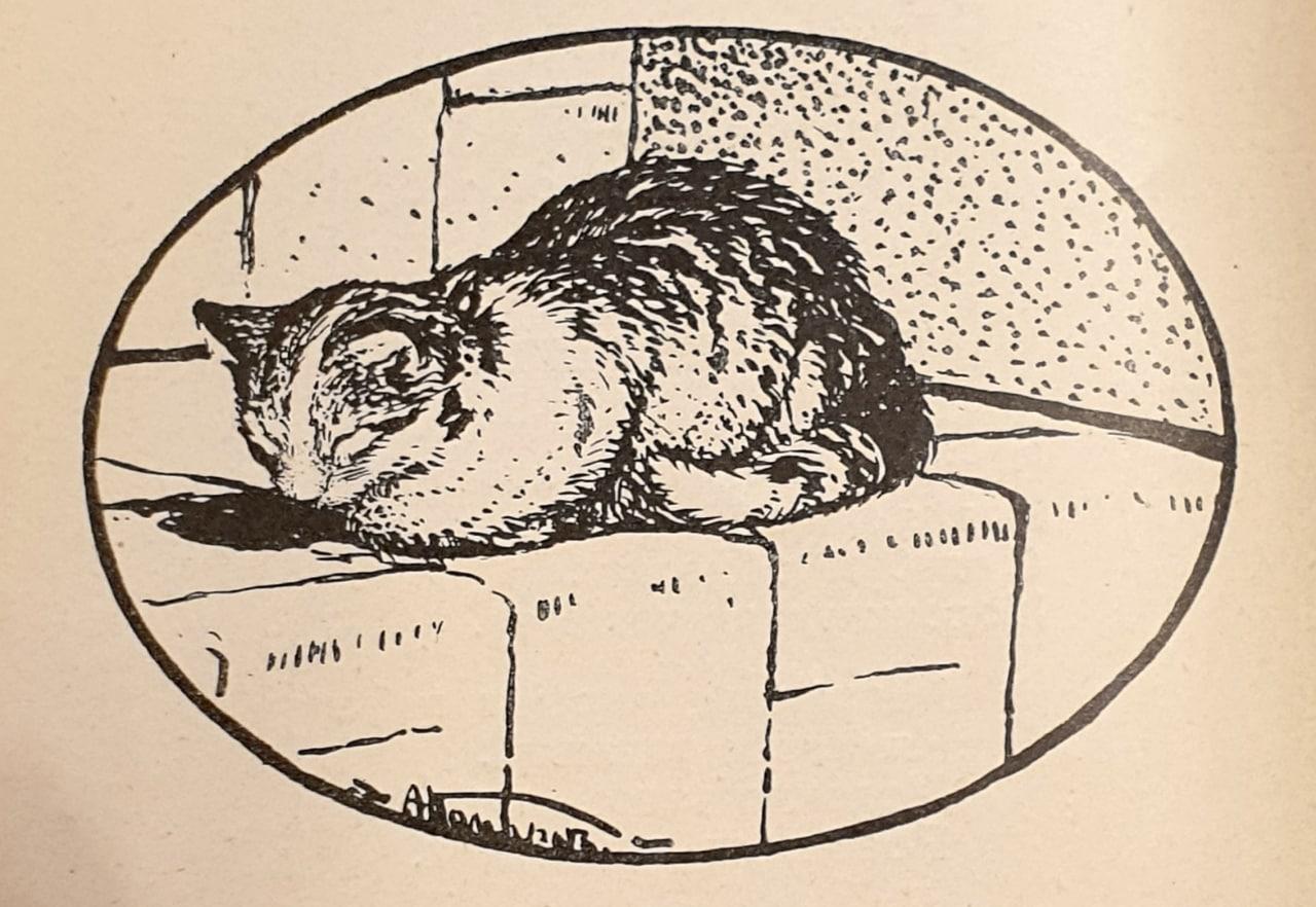 Про кошку  Такъ же, какъ намедни, Всѣ ушли къ обѣднѣ, Только по гостиной Ходитъ...