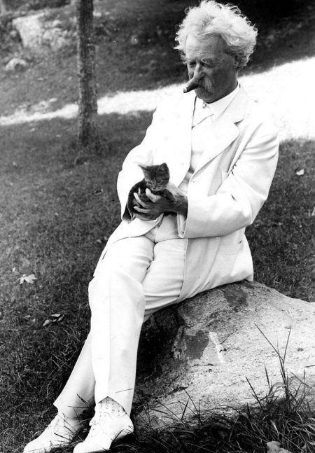  Котофил Марк Твен  Марк Твен обожал кошек, они в его доме водились...