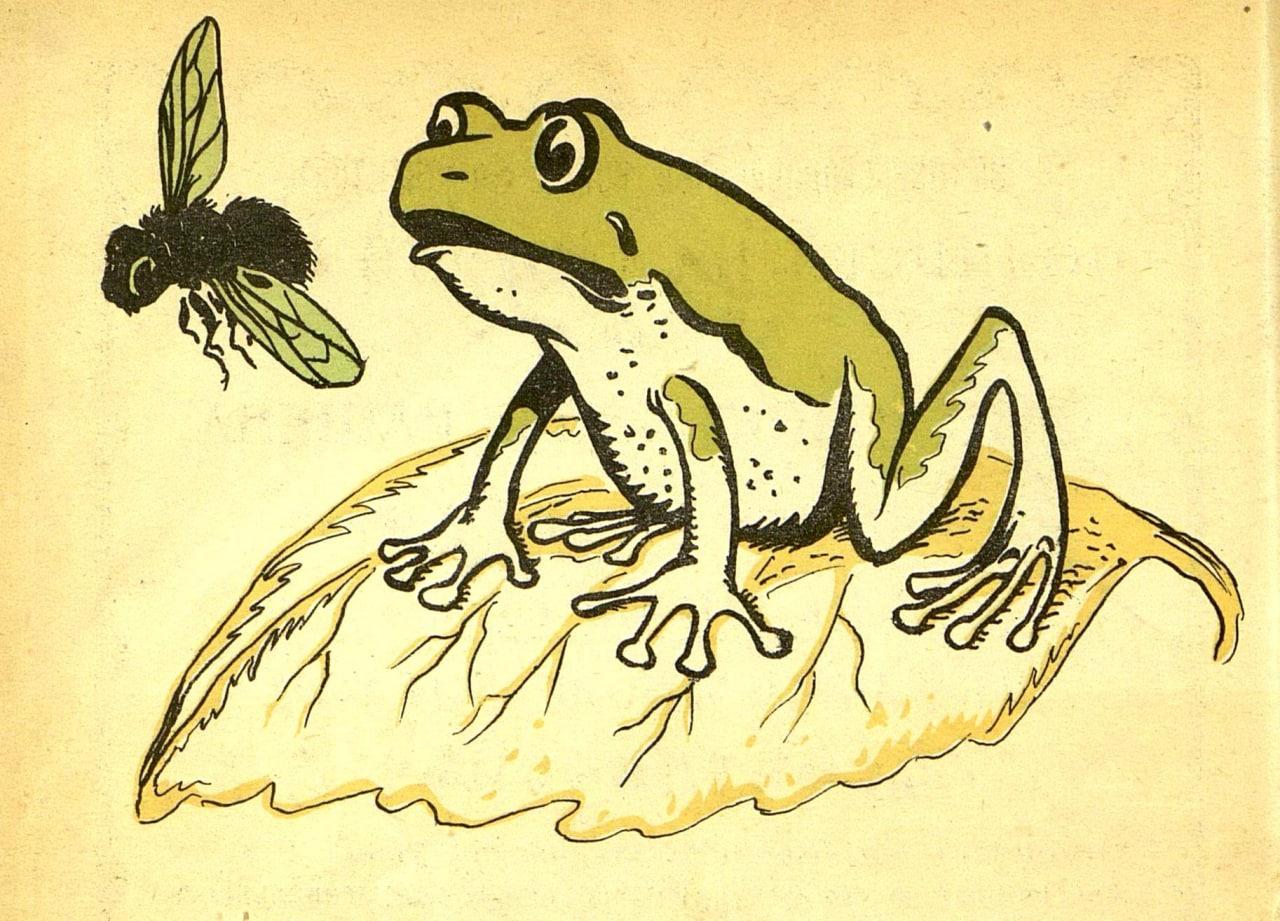 """Кто?  Надъ лягушкой муха вьется, Издѣвается, смѣется: — """"Зумъ-зумъ-зумъ, какой..."""