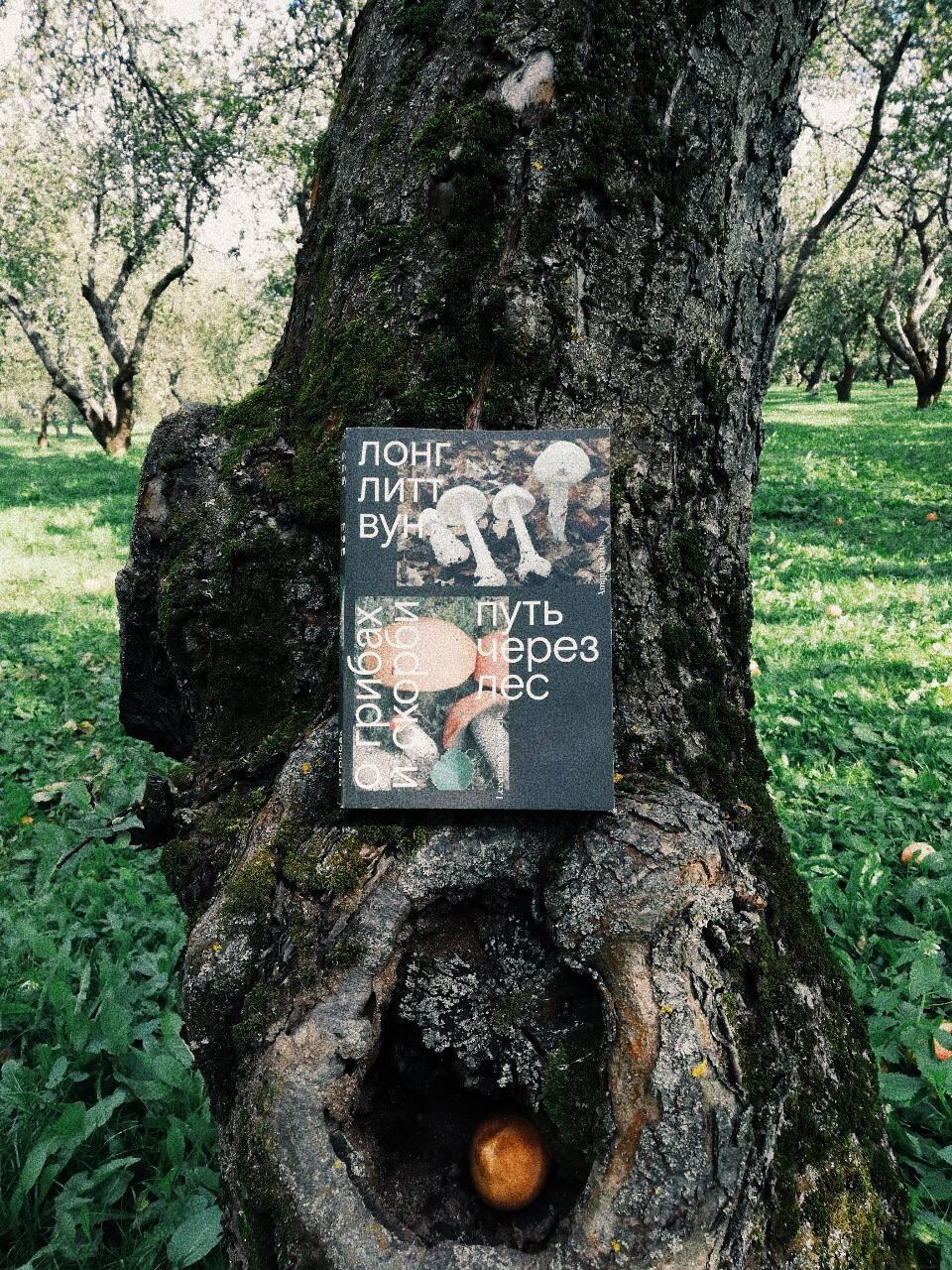 Следом за «Годом магического мышления» Джоан Дидион я прочитала ещё одну...